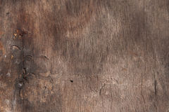 Clean and Smooth Texture of Tree.  Royalty Free Stock Photos