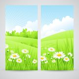 Clean spring amazing scenery. Vector illustration. EPS 10 Royalty Free Stock Photo