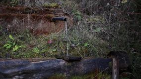 Clean Stream Flowing From The Wellspring. Close up stock video footage