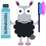 Clean teeth sheep Royalty Free Stock Photo