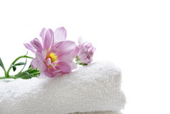 Clean towel Royalty Free Stock Photos