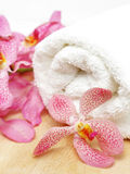 Clean towel and orchid Stock Photos