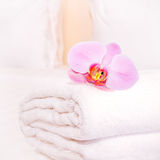 Clean towel with orchid on the bed Stock Photos