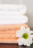 Clean towels and daisy royalty free stock photography