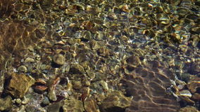 Clean transparent mountain water. Clean transparent water of a mountain river stock footage