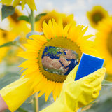 Clean up the environment. Ecology concept Stock Photography