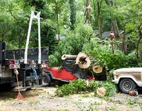 Clean Up After Storm Damage royalty free stock images