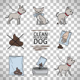 Clean up after your dog information stock images