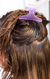 Clean washed brown hair Royalty Free Stock Images