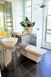Clean washroom in a condominium. Well furnished washroom in a luxury condominium royalty free stock photography