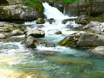 Clean water. In the Ordesa National Park, Huesca (Spain Stock Photo