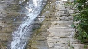 Clean water fall from old rock - waterfall in the forest stock video footage