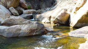 Clean water flow in rocky river in mountain close up. Rapid water stream from tropical waterfall pouring in mountain. River. Wild nature in rainforest stock video