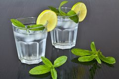 Clean water in a glass of ice cubes, lemon and fresh mint. Water cup for solid health. Stock Photography
