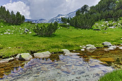 Clean water of Mountain river near Muratov peak, Pirin Mountain Stock Photography