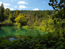 Clean water, National Park - Plitvice lakes, Royalty Free Stock Photos
