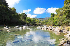 Clean water of Rio Toa , Cuba Royalty Free Stock Photo