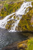 Clean water - waterfall, Iceland. Royalty Free Stock Image