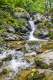 Clean waterfall in forest Stock Photos