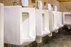 Clean white urinals in men`s bathroom. Design of white ceramic urinals for men in toilet room royalty free stock photos