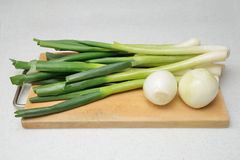 Cleaned onion and green onion Stock Image