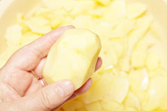 Cleaned potatoe in hand Royalty Free Stock Image