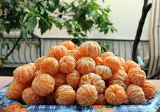 Cleaned tangerines mandarins raw material for jam Stock Photography