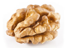 Cleaned walnuts Stock Image