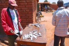 Cleaner of fish at the market of Pomerini in Tanzania, Africa 72 Stock Images