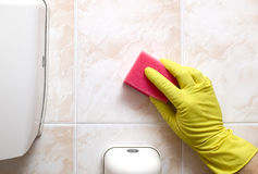 Cleaner with gloves  and red sponge Stock Photos