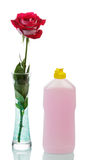 Cleaner and rose Royalty Free Stock Photo