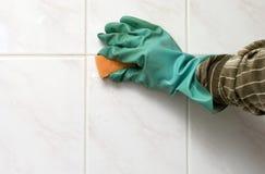 cleaning Zdjęcia Stock