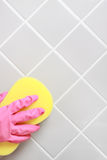 Cleaning. Stock Photography