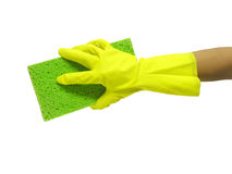 Cleaning. A photo of a woman holding a sponge while cleaning Stock Images