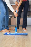 cleaning Obraz Royalty Free