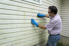 Cleaning Alage And Mold From Vinyl Siding. Contractor cleaning algae and mold from vinyl siding of a customers home royalty free stock photography