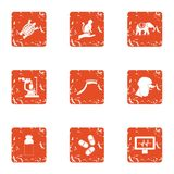Cleaning the animal icons set, grunge style. Cleaning the animal icons set. Grunge set of 9 cleaning the animal vector icons for web isolated on white background royalty free illustration