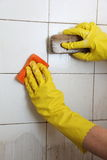 Cleaning of dirty old tiles in a bathroom Stock Photography