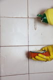 Cleaning of dirty old tiles in a bathroom Stock Image