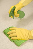 Cleaning With Environmentally Safe Cleanser Royalty Free Stock Image