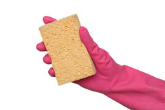 Cleaning equipment, sponge in hand Royalty Free Stock Photos