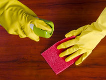 Cleaning furniture. Table in yellow gloves with red sponge Stock Images
