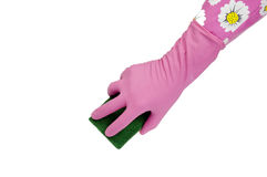 Hand in pink rubber glove with scrubbing sponge Royalty Free Stock Photo