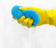 Cleaning with gloves Stock Photo