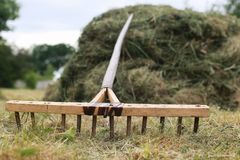 Cleaning with a rake on a farm. Cleaning grass and leaves with a rake on a farmr Stock Photo