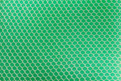 Cleaning Green Sponge Texture Background. Royalty Free Stock Photography
