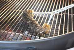 Cleaning the grill. Charcoal grill cleaning and maintenance royalty free stock image