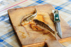 Cleaning and gutting little river fish Stock Images
