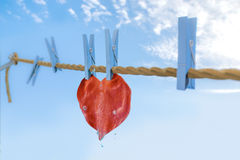 Cleaning the heart Royalty Free Stock Photography