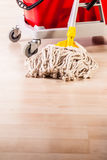Cleaning the house Royalty Free Stock Photography
